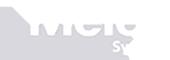 Meier Systems AG Logo